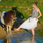 Mimi Hops S — Европейская мини-лошадь